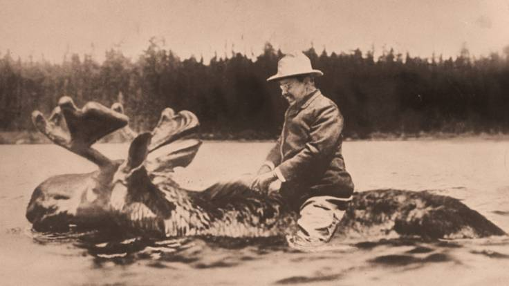teddyrooseveltonmoose
