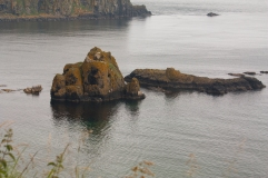 Ruins across from Carrick-a-Rede (Source - Robert Brown)