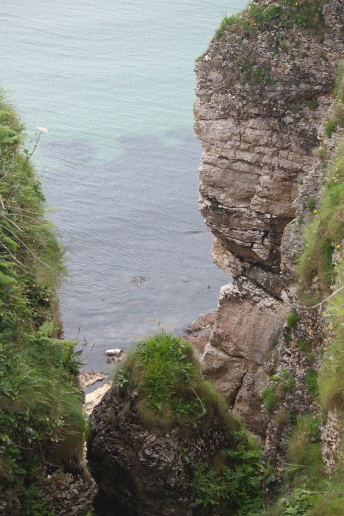 Carrick-a-Rede (Source - Robert Brown)