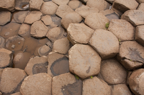 Giant's Causeway Stones (Source - Robert Brown)